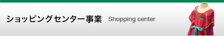 购物中心事业