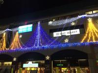 MIDORI Christmas♪