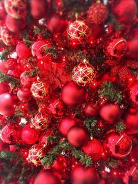 Christmas tree 『りんごのツリー』