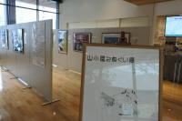 MIDORI長野店展示の様子>