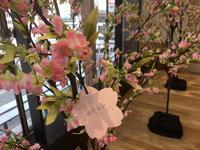 夢で満開! MIDORI桜 ~みんなの夢でMIDORI桜を満開に♪~