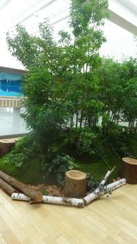 ようこそ、信州へ ~信州の夏をMIDORIで~