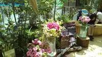 【ようこそ信州へ】今週のお花