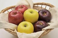 【長野県農政部】おいしい信州ふーどカフェ 第2回 りんごのがっこう