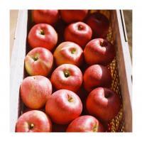 【りんごのひろば】飯綱町地域村おこし協力隊 飯綱町 フイルム写真展