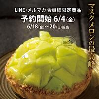 5HORN PREMIUM【メロンタルト】