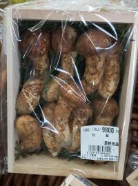 秋の味覚 『松茸』 入荷しました!