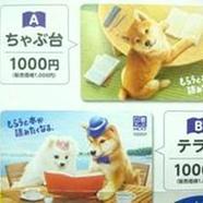 柴犬図書カードNEXT