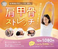 肩甲骨ストレッチ~~終了期間迫る!!!